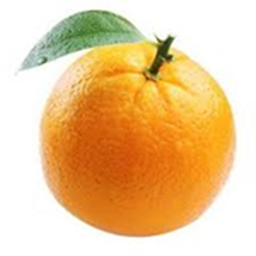 Orange Bot's Avatar
