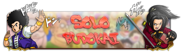 budokai_solo_banner.png