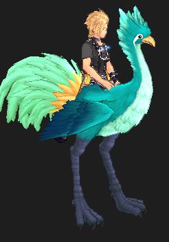snapper_bird.png