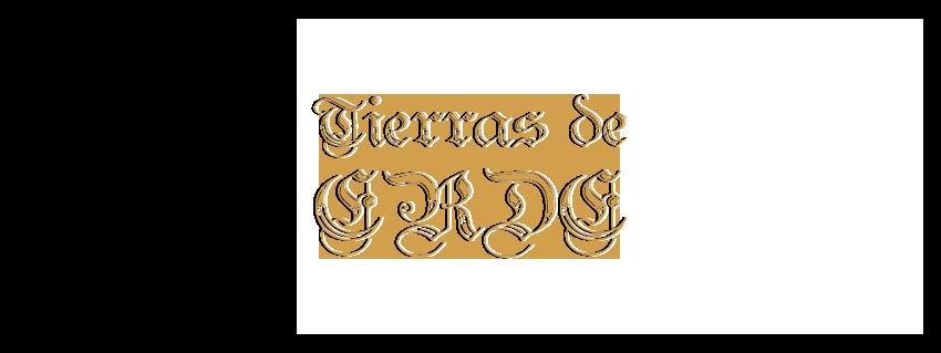TIERRAS DE ERDE Erde1