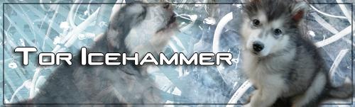 toricehammer.png