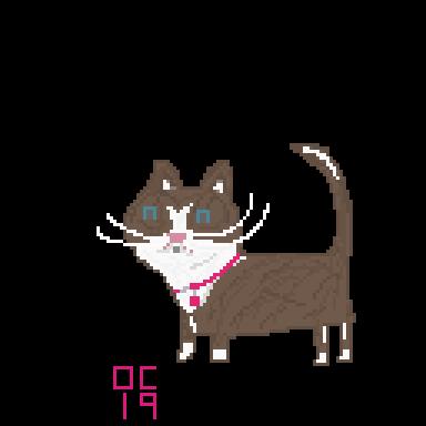 lexis_cat_com.png