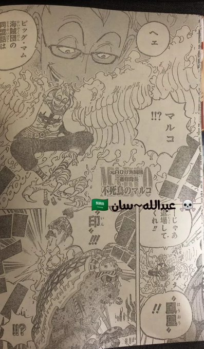 One Piece Spoilers 981 EZpWK2EWkAEA8eB