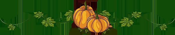 Halloween_divider.png