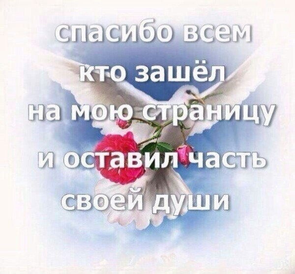 VqcXpa-MPKM.png