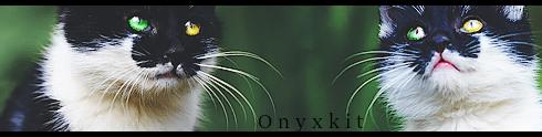 Kiplekker [Setjes shop] - Pagina 2 Onyxos1