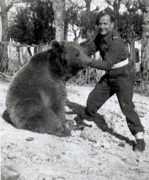 wojtek-bear.png