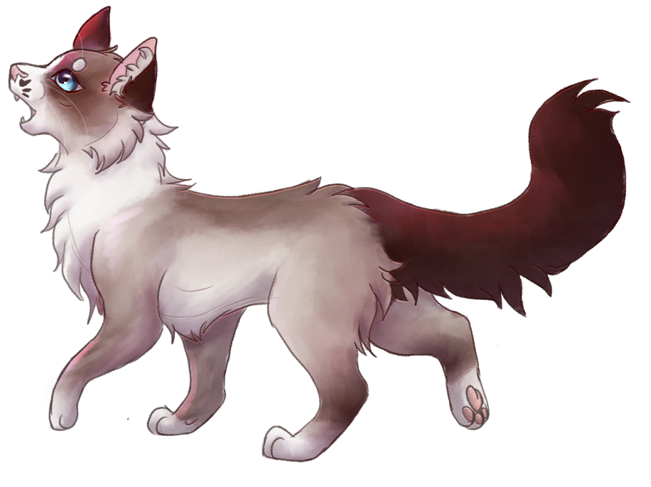 ♔ Riverclan Patrols - Drills - Tasks Lunarpaw
