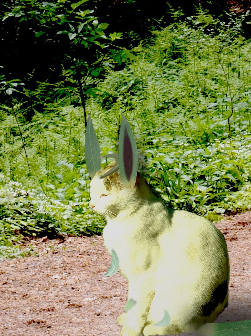 [Image: leafycat.png]