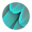 turquoise3.png
