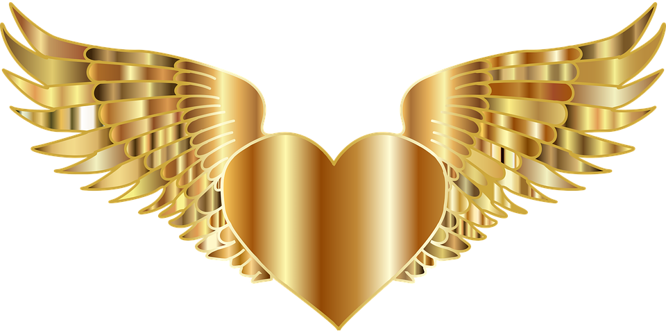 heart-2789686_960_720.png