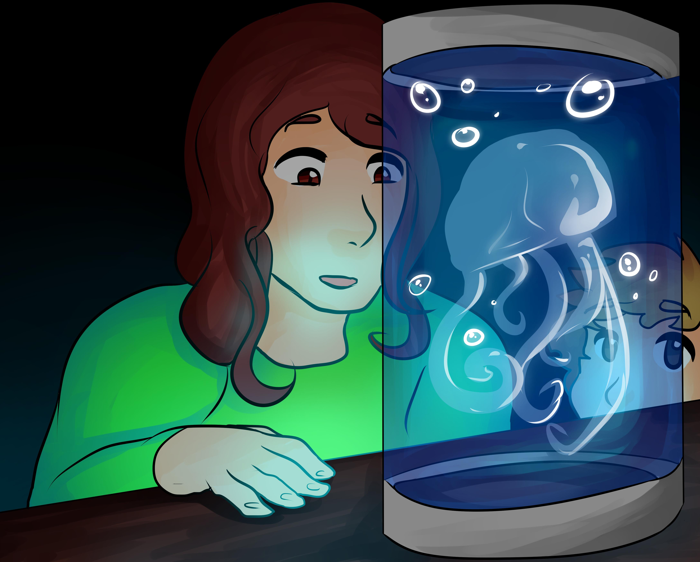 meduse.jpg