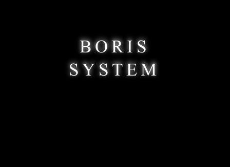 BorisSystemLogo.png
