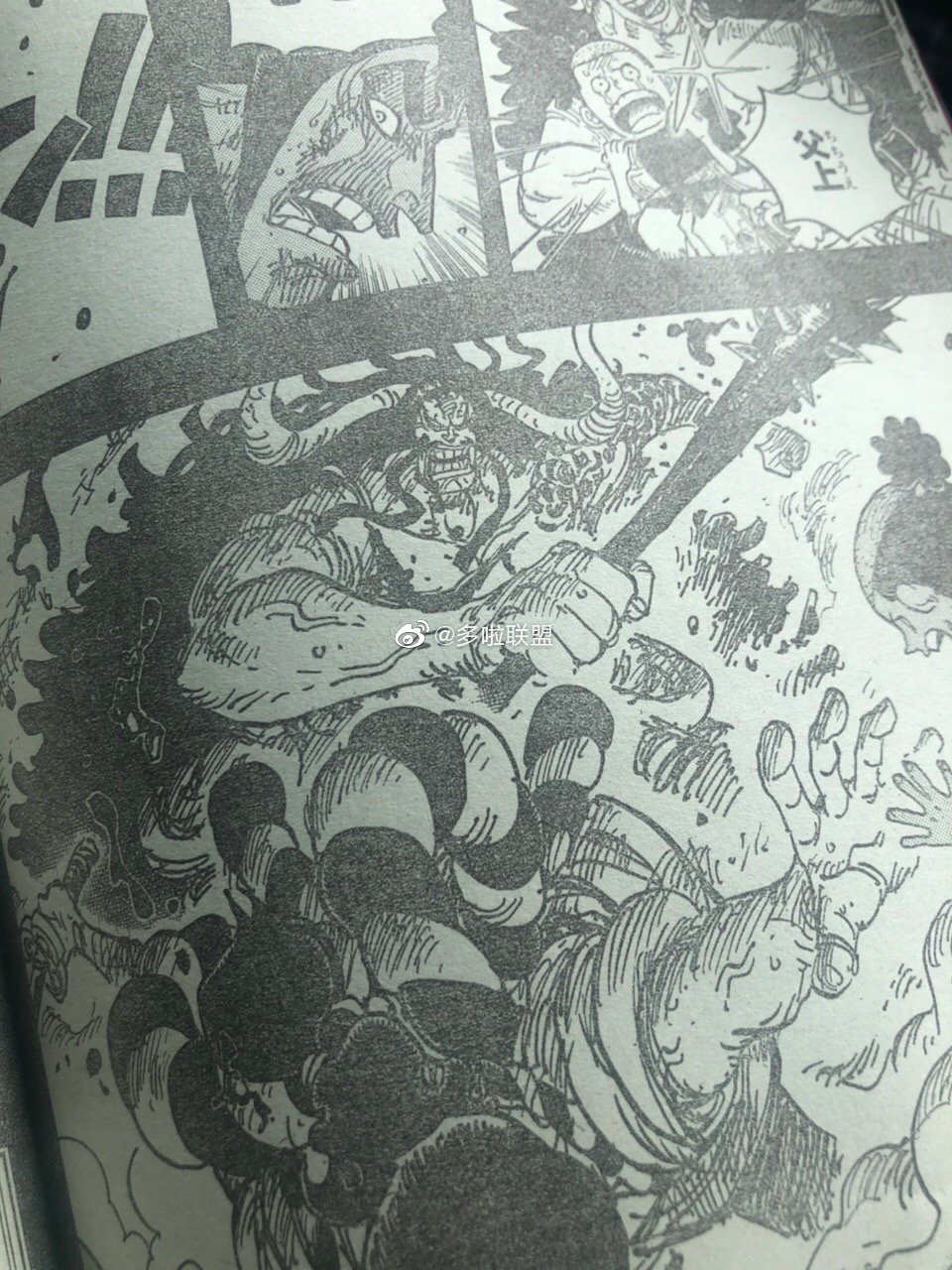 One Piece Spoilers 970 02