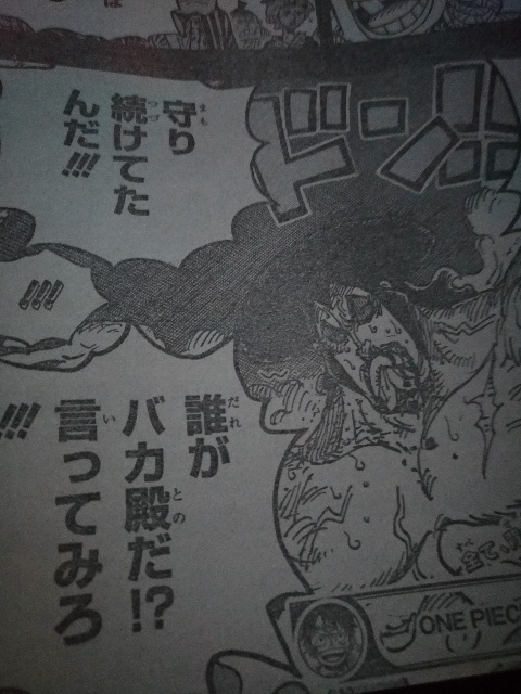 One Piece Spoilers 971 04