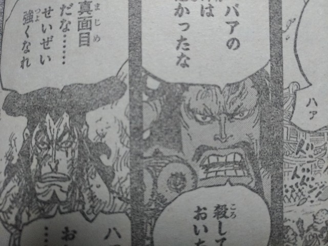 One Piece Spoilers 972 06