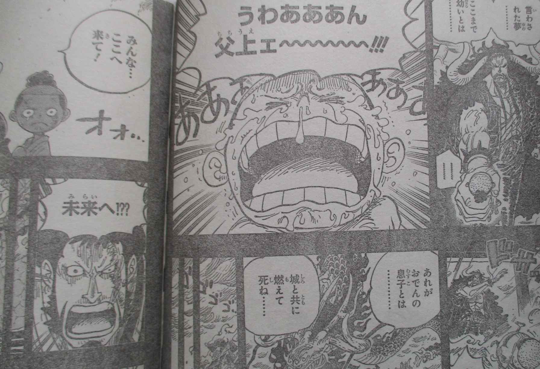 One Piece Spoilers 973 01