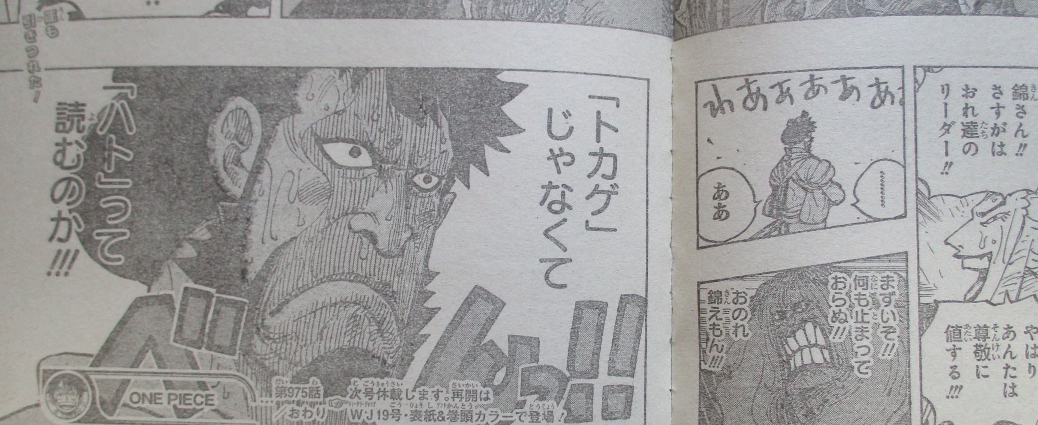 One Piece Spoilers 975 02
