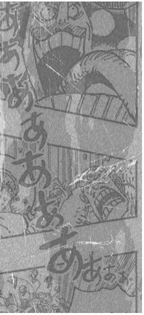 One Piece Spoilers 981 03