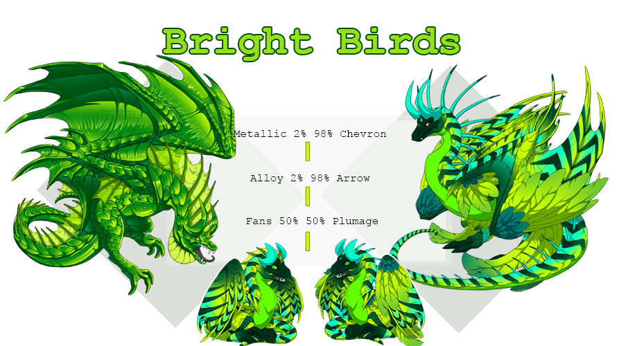 bright_birds.png