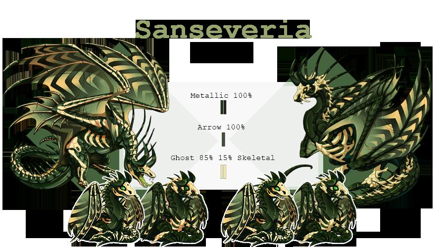 Sanseveria.png