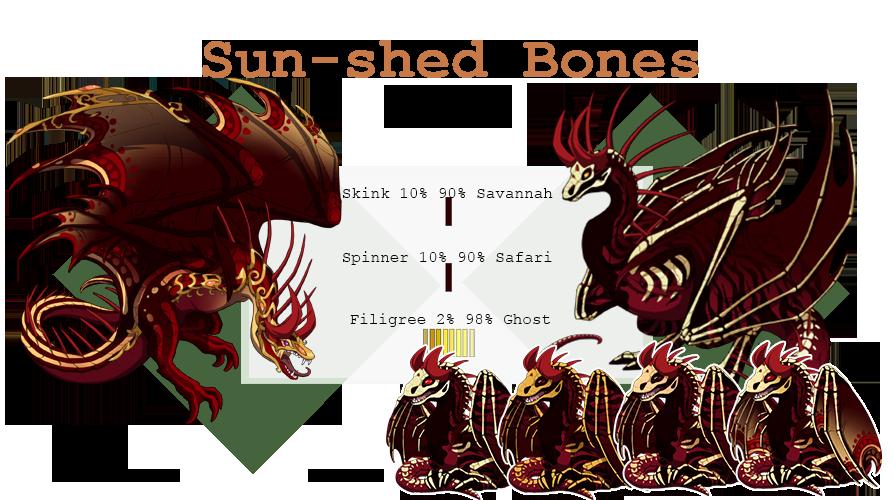 suns-shed_bones.png