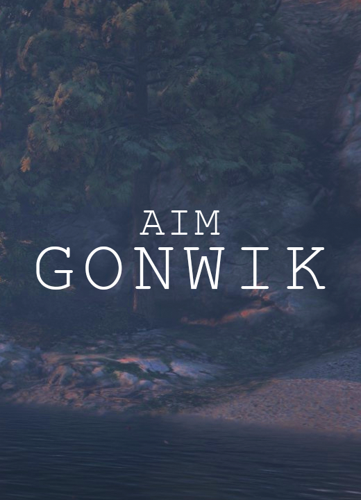 AIM GONWIK