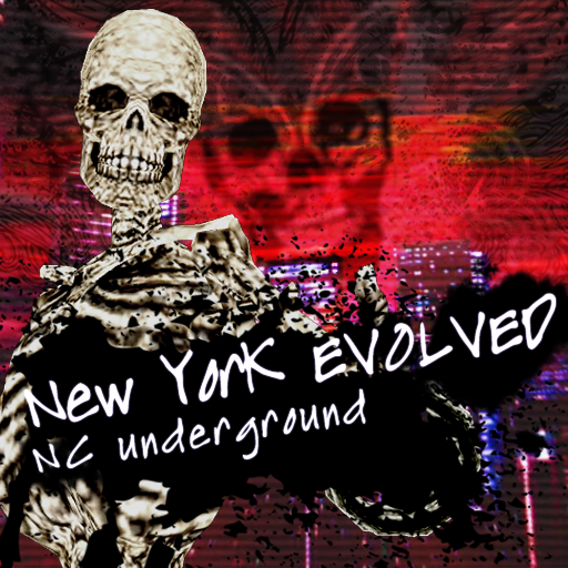 https://cdn.discordapp.com/attachments/360586311939391492/579819959237214249/New_York_EVOLVED_Type_A-jacket.png