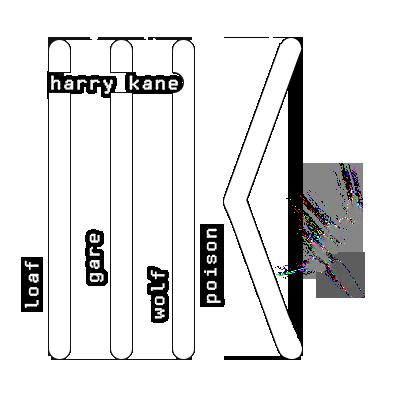 Harry Kane Hk