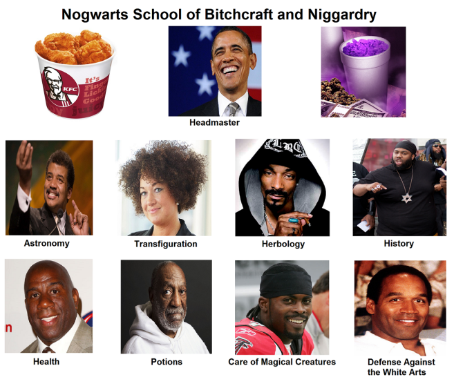 https://cdn.discordapp.com/attachments/372508286529961996/390279624652881921/nogwarts_school_of_bitchcraft__niggardry.png