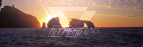 [Image: beat_this_flexi.jpg]