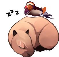 sleep_apng.png