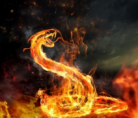 [Bild: Feuerschlange.jpg]
