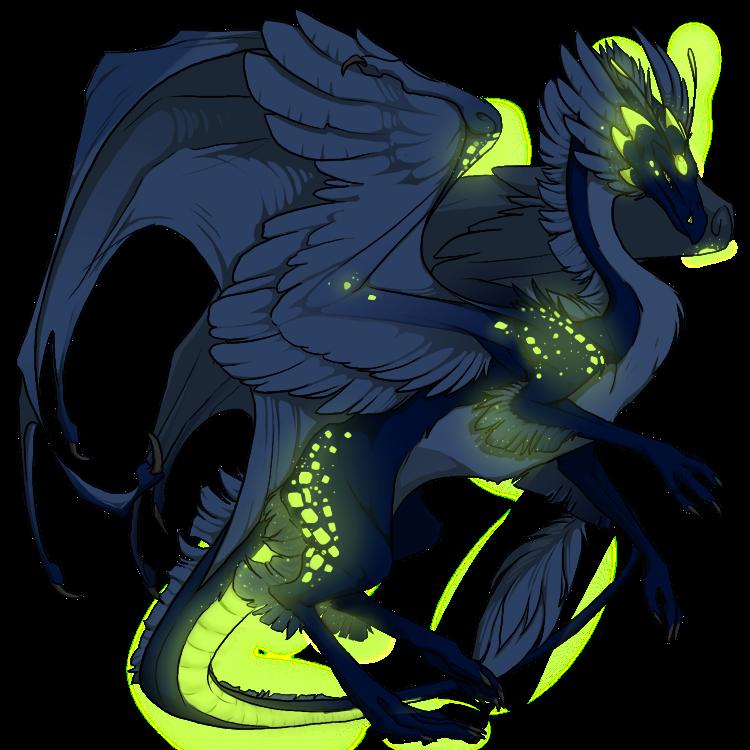 skydancer_f_dragon.png