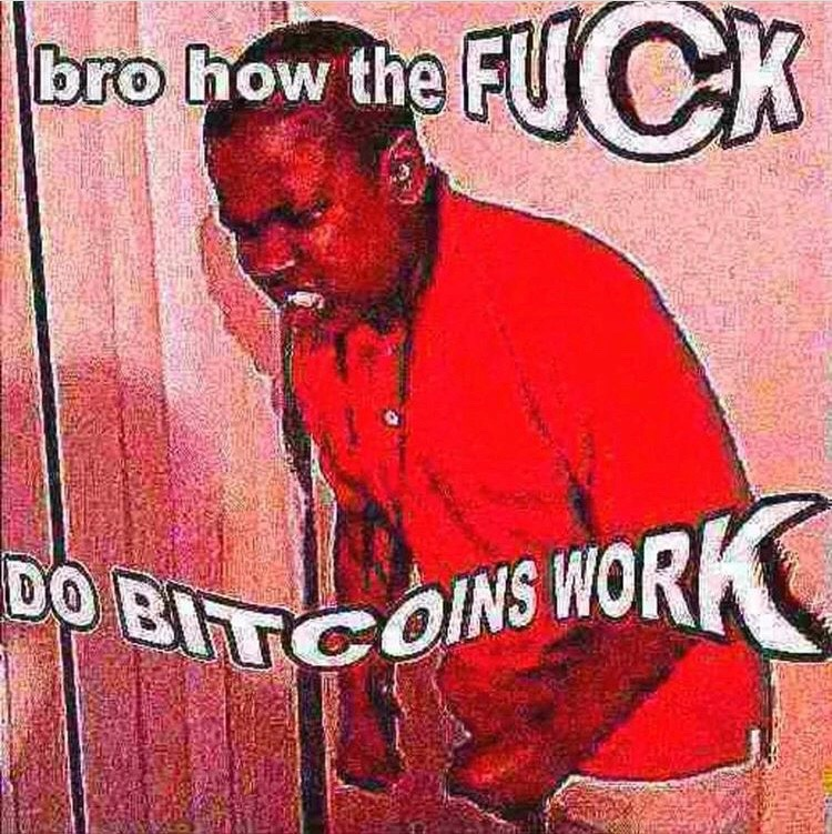 https://cdn.discordapp.com/attachments/397984660371668994/399833323288920065/bro-how-the-fuck-do-bitcoins-work.jpg