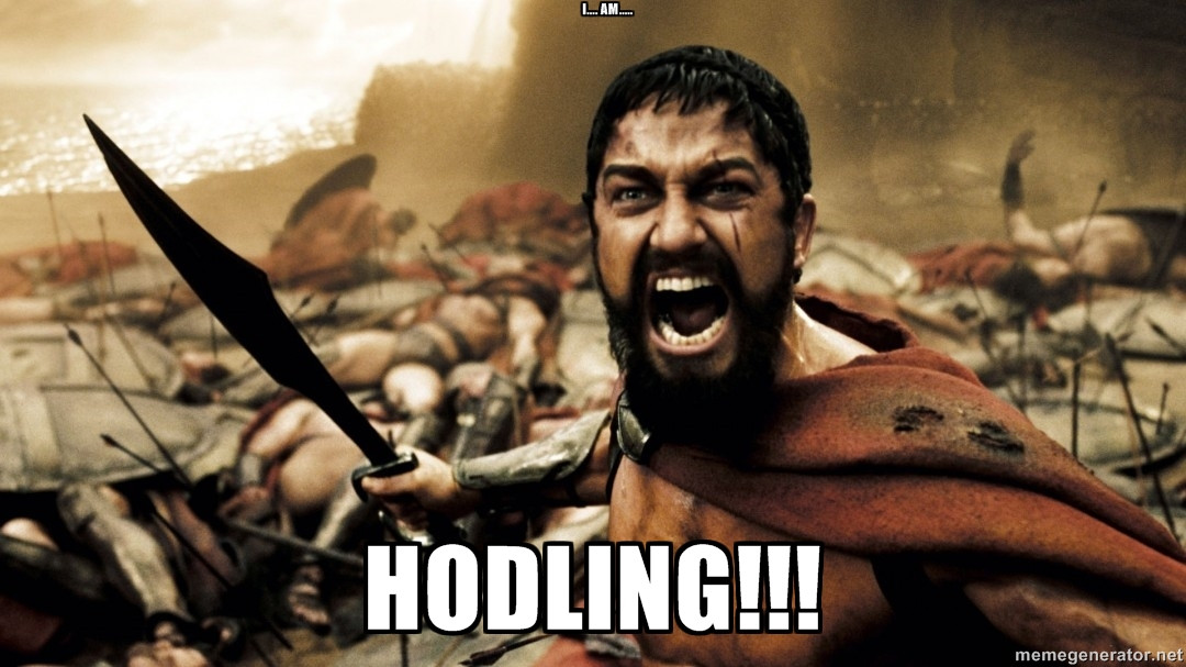 https://cdn.discordapp.com/attachments/397984660371668994/400504786241323008/spartans-hodl.jpeg