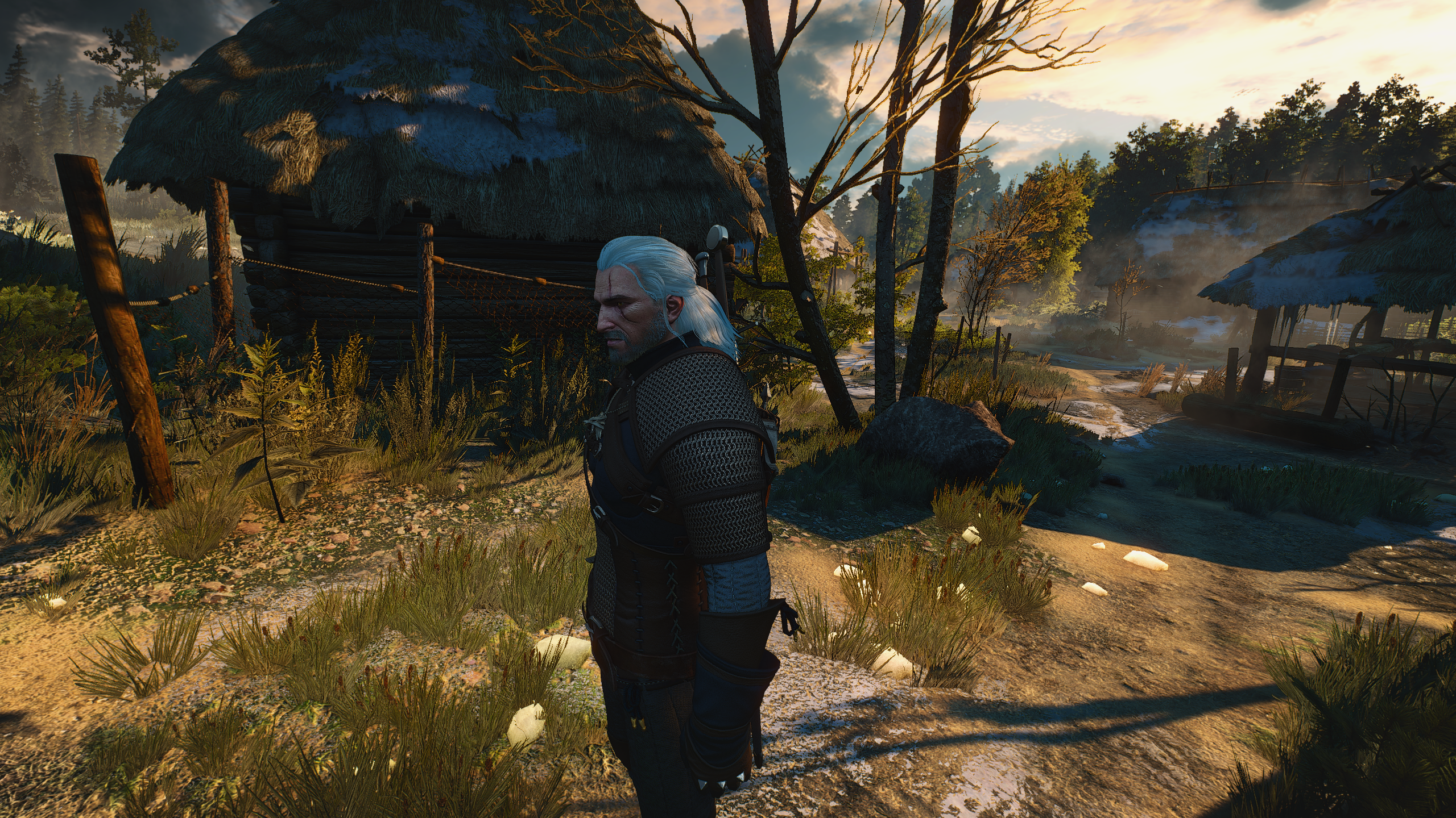 The_Witcher_3_Screenshot_2018.02.25_-_00