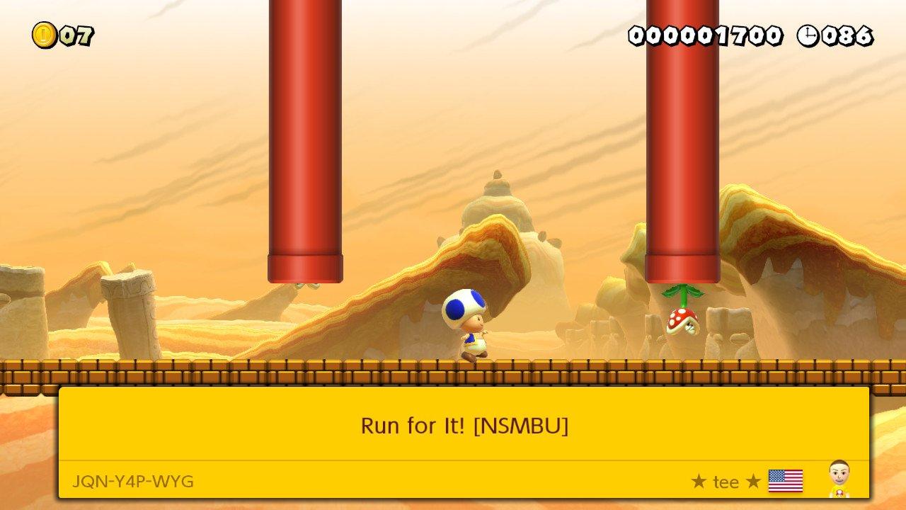 Run for It! [NSMBU]