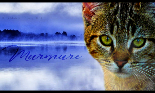 We want to trust your kind, but we are full of fear. [PV Nuage Hypnotique & Murmure] Murmure_signature