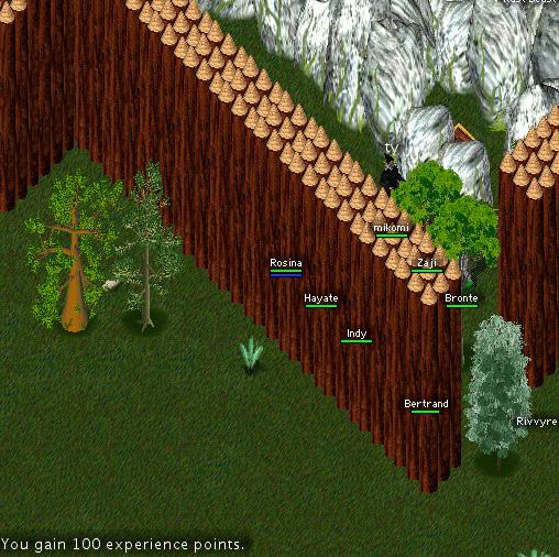 TM_forest_troll_dance10.jpg