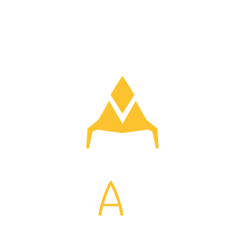 Logo for Team Vitality