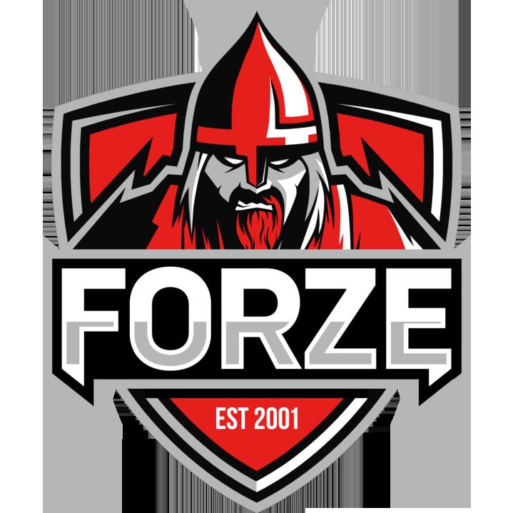 Logo for forZe