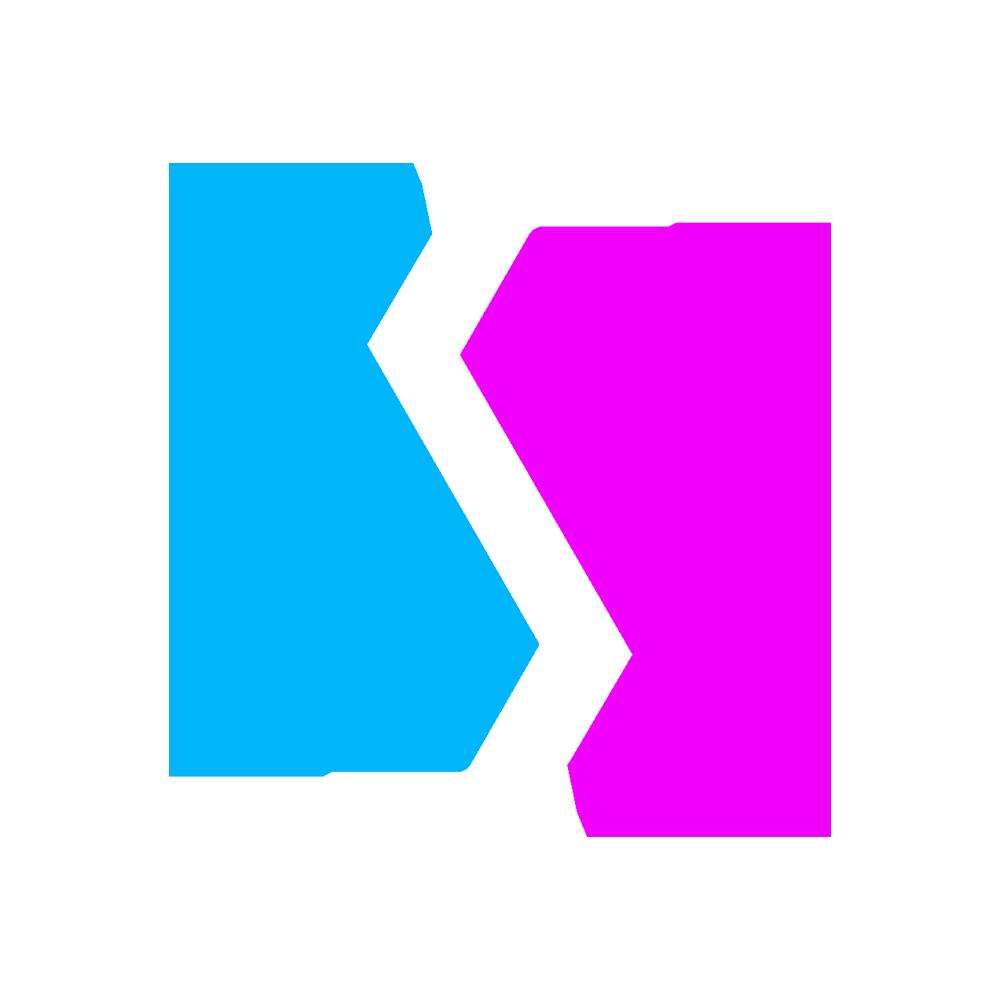 BDS Esport team logo