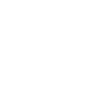 Logo for SeekOrg