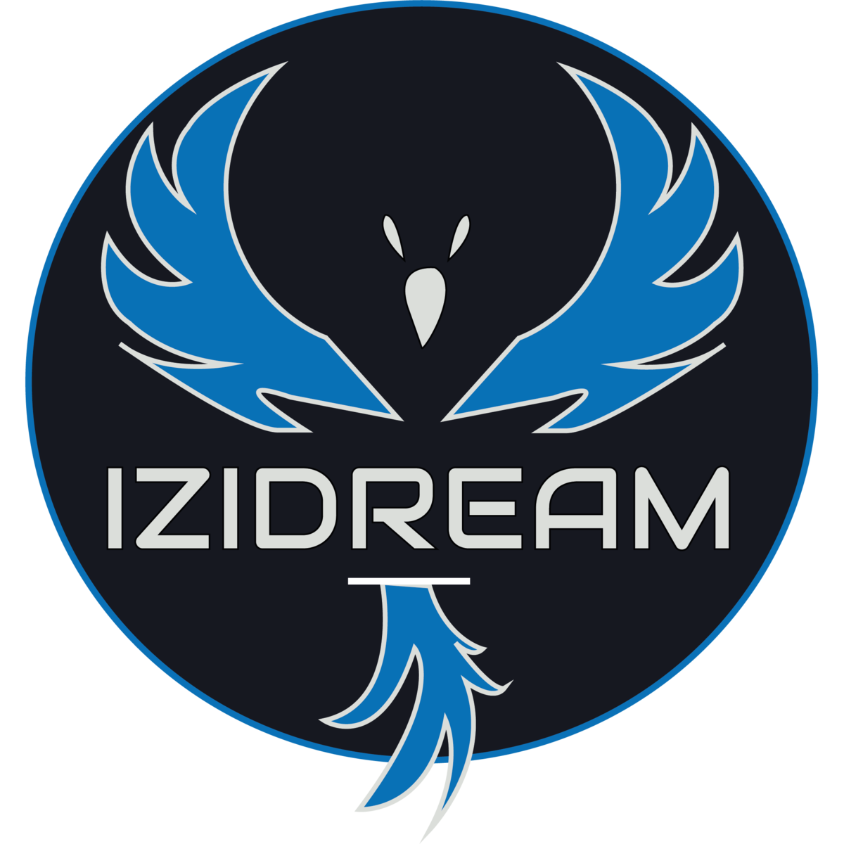 IziDream team logo