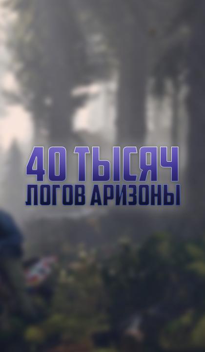40 ТЫСЯЧ ЛОГОВ АРИЗОНЫ