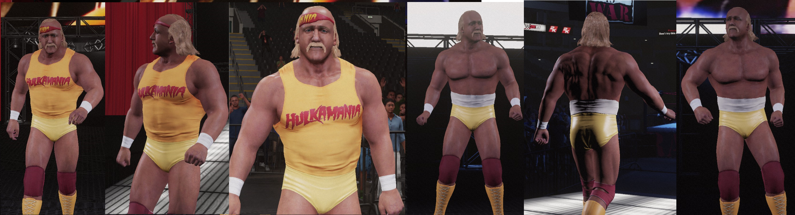 Hogan_wm2.png
