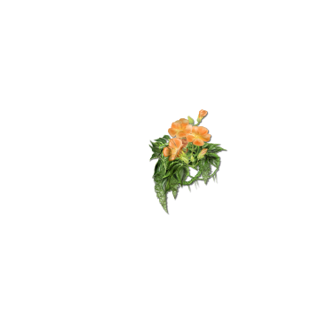 skin_mirror_f_dragon_flower.png
