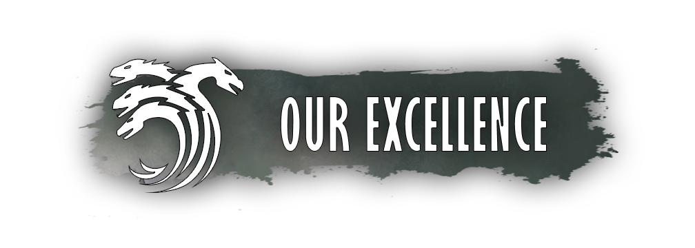 our_excellence.png