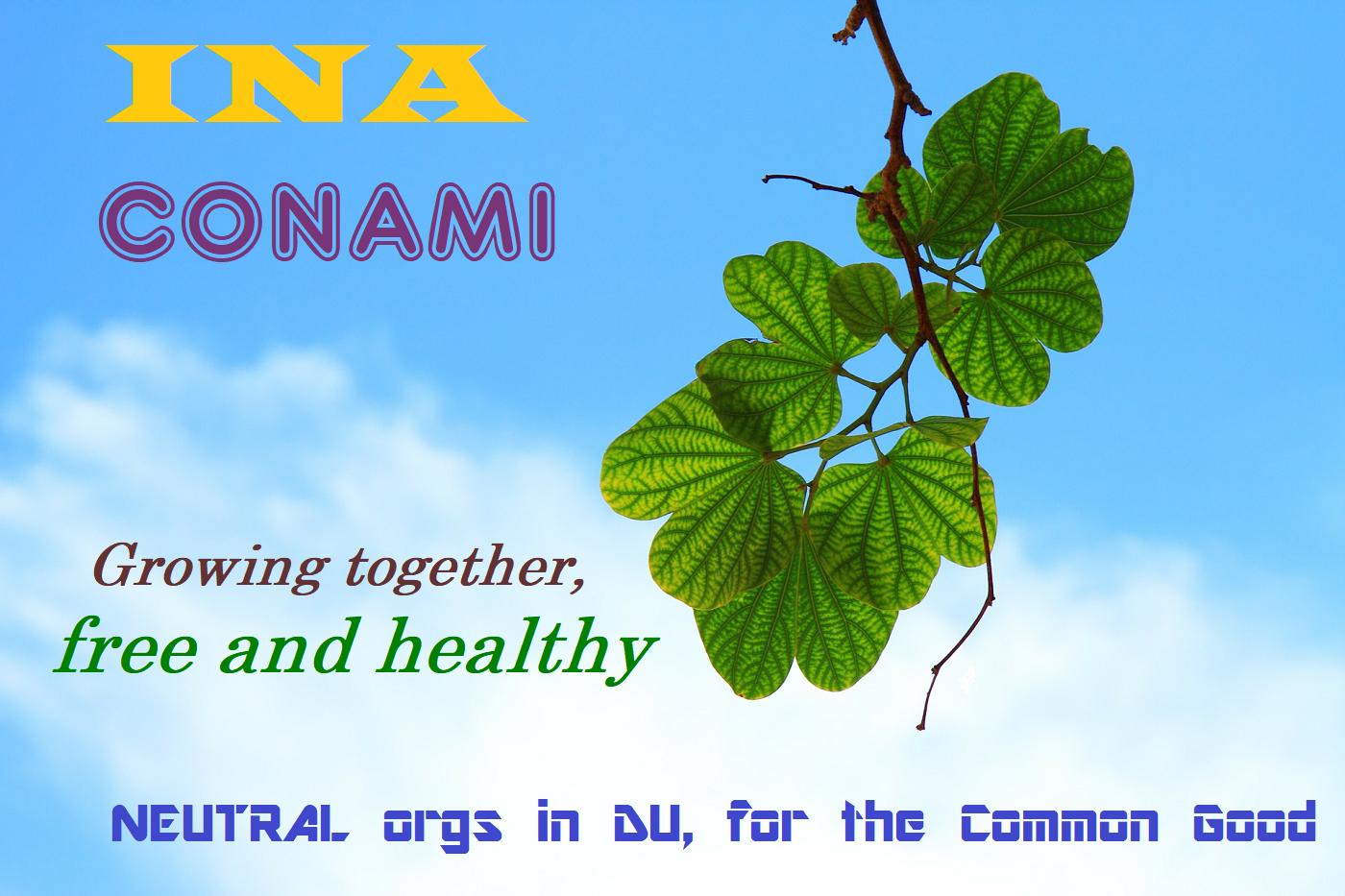 INA-CONAMI-logo3.png